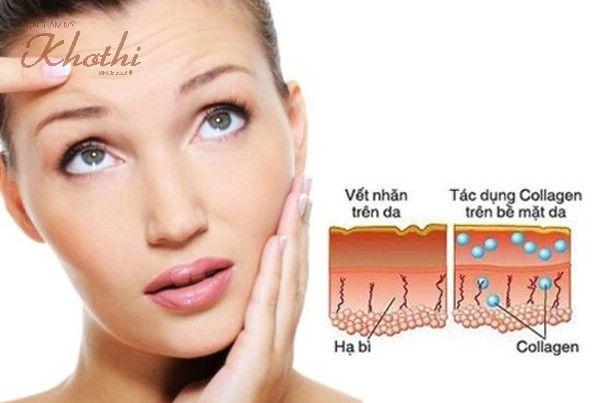 Collagen đóng vai trò vô cùng quan trọng trong việc tạo mối liên kết giữa các mô dưới da