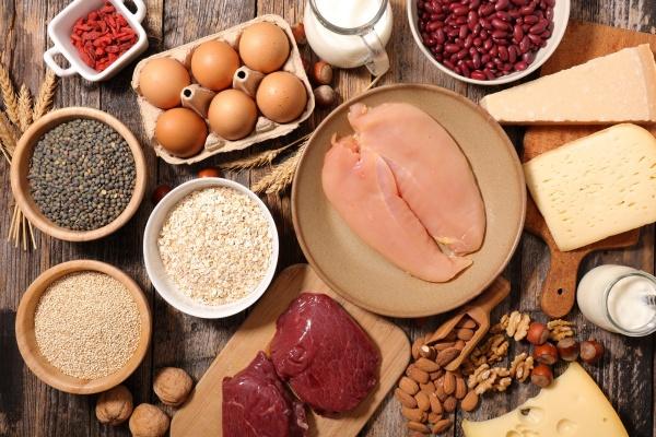 Khẩu phần ăn có protein từ thịt, trứng, sữa,...giúp ta no lâu hơn