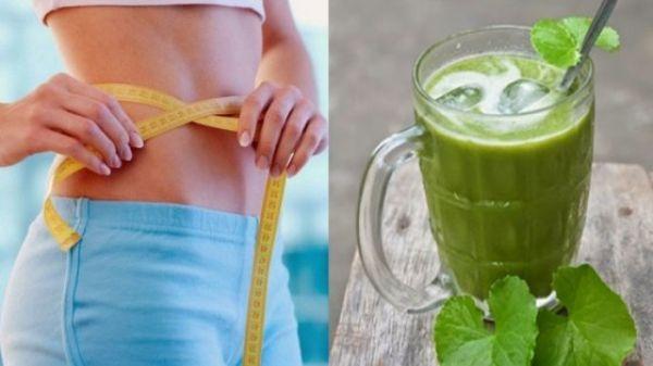 Giảm cân bằng rau má còn giúp giảm cholesterol trong máu