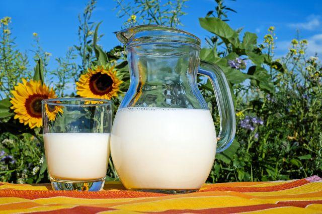 giảm cân bằng sữa tươi không đường