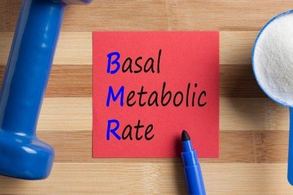 Cần tính chỉ số BMR trước khi luyện tập.