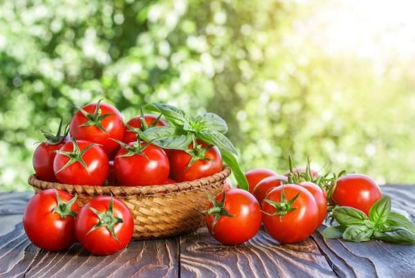 Cà chua giúp làm đẹp da và giảm mỡ